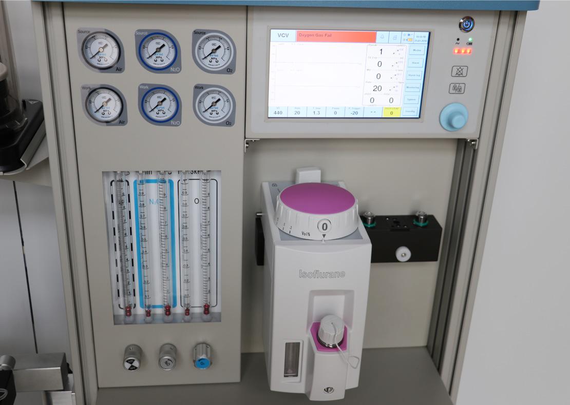 宠物麻醉呼吸机DAV80V